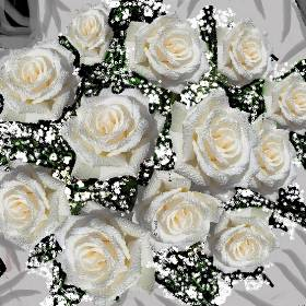 White rose bouquet. Flowers for all occasions in Halifax. Delivery 7 days a week. Valentines, mothers day